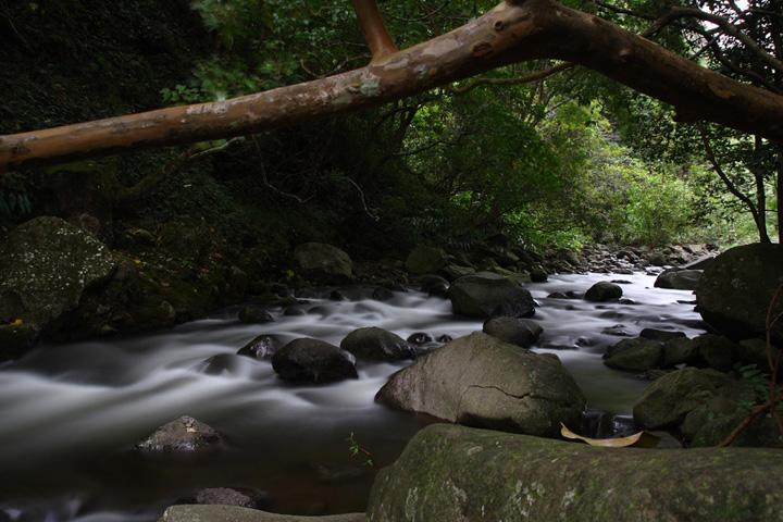 Hawaiian Creek
