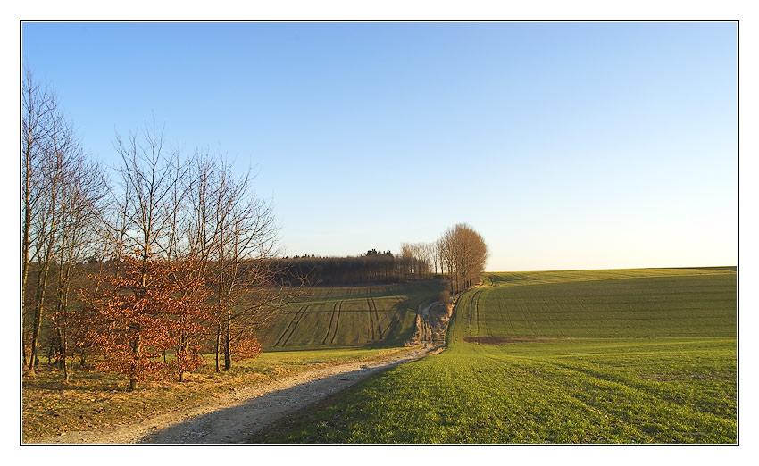 Haxterberg im März (später Nachmittag)