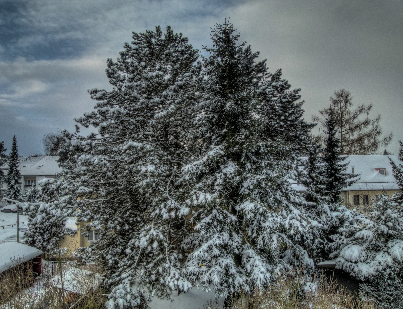HDR im Winter