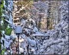 HDR Winter-Wunder-Welt