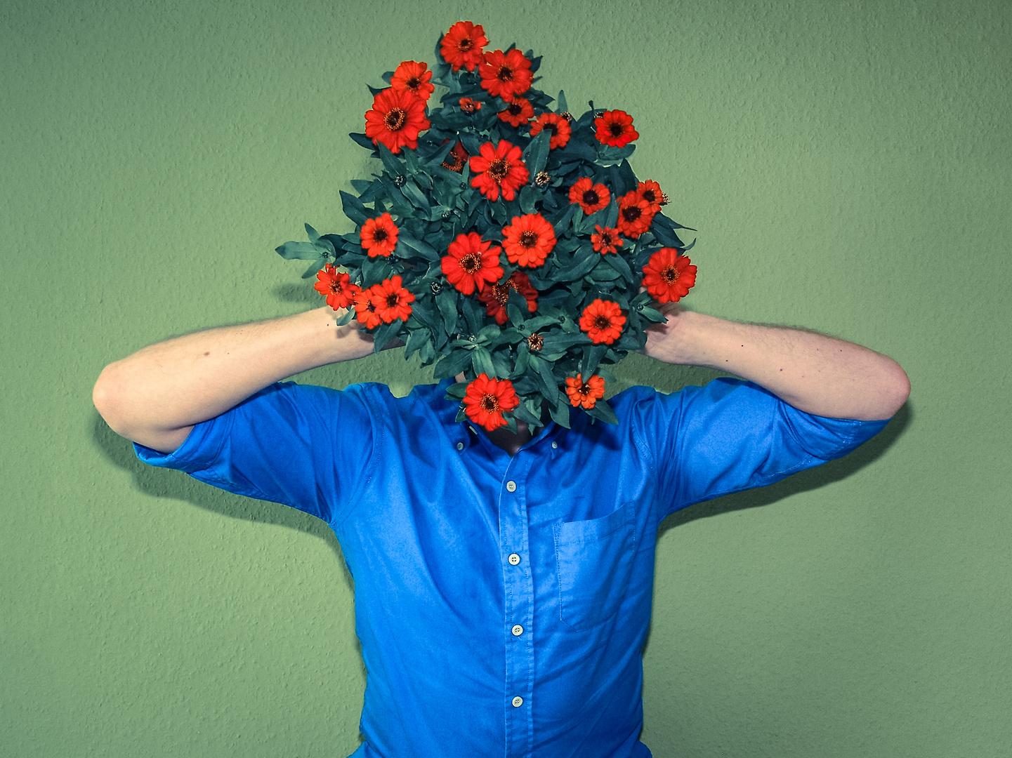 head flowers