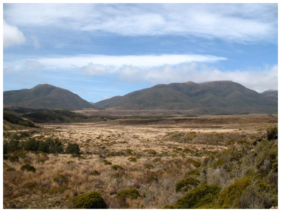 Heaphy Track (Plains and Mountains)