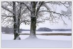 Heart of Winter (IV)