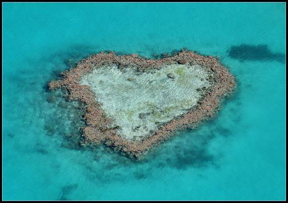 """""""Heart Reef"""""""