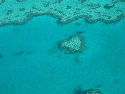 Heart Reef vu du ciel