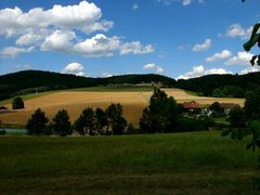 Hechtfeld