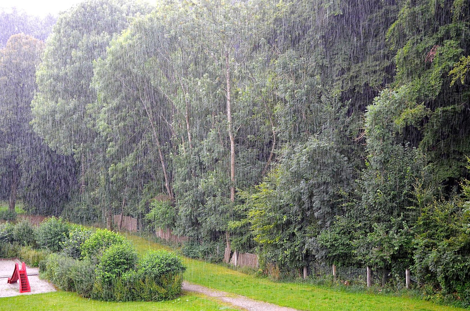 heftiger Regenschauer
