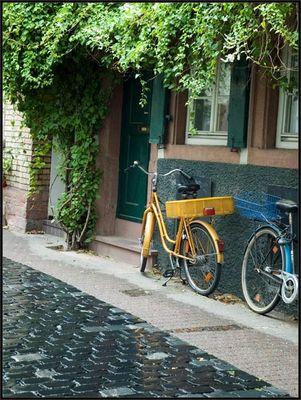 Heidelberg after rain