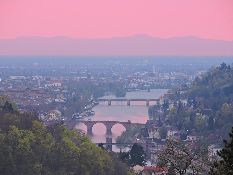 Heidelberg im Abendrosa II