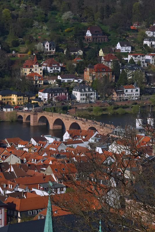Heidelberg mit Blick auf Altstadt und Alte Brücke
