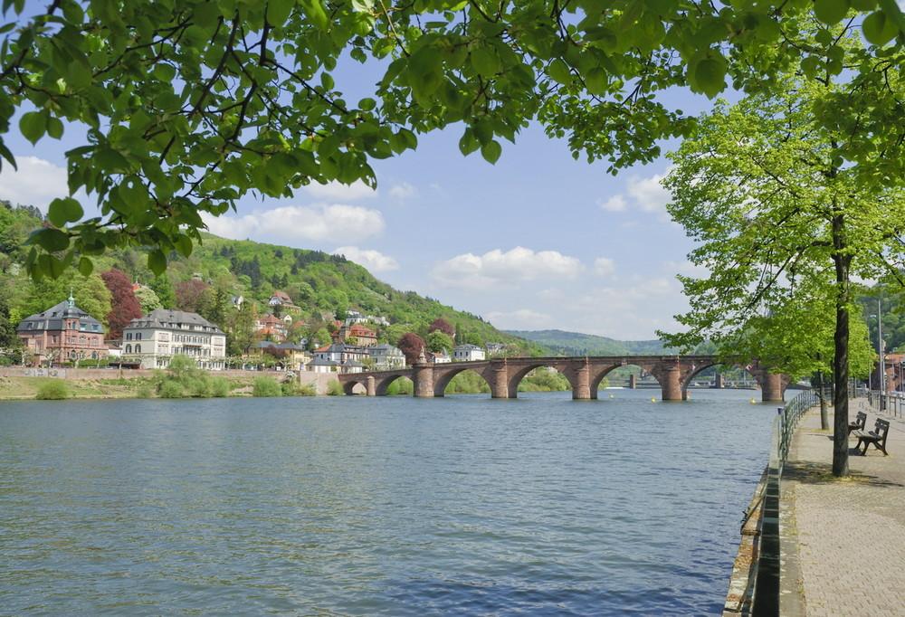 Heidelberg mit Neckar