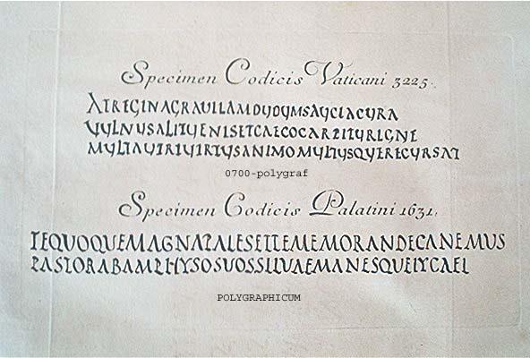 heidelberg PALATINA specimen codicis vaticani  3225 specimen codicis palatini 1631 ROM Palatina