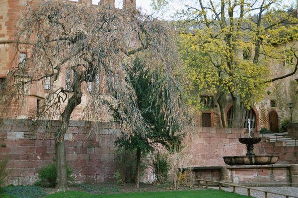 Heidelbergerschloss