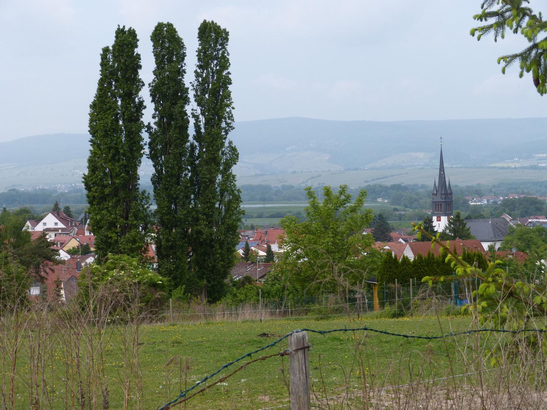 Heidesheim im April