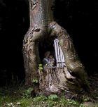 Heiligenbild im Baum