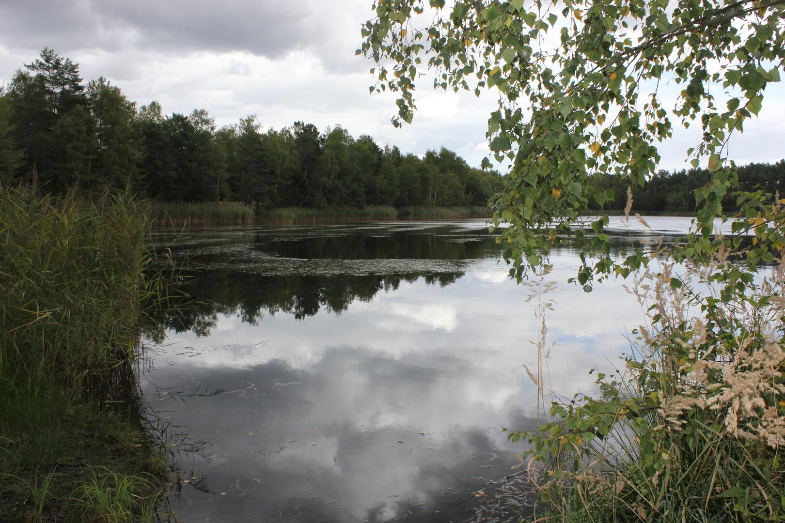 Heimat, Niederlausitzer Heidepark