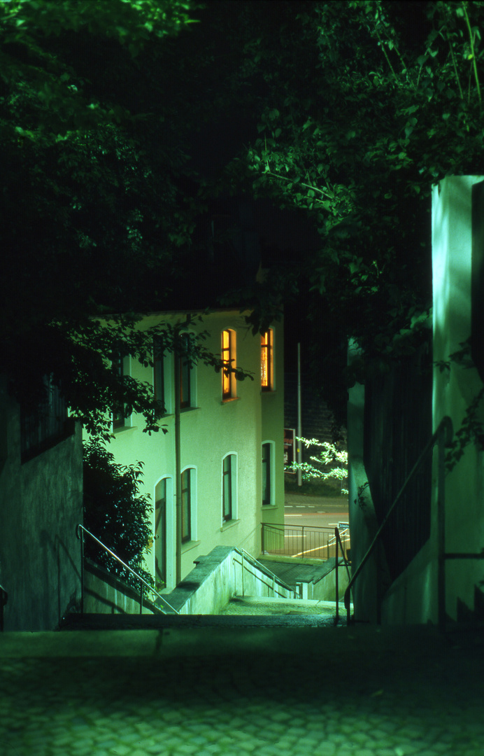 Heimgartentreppe