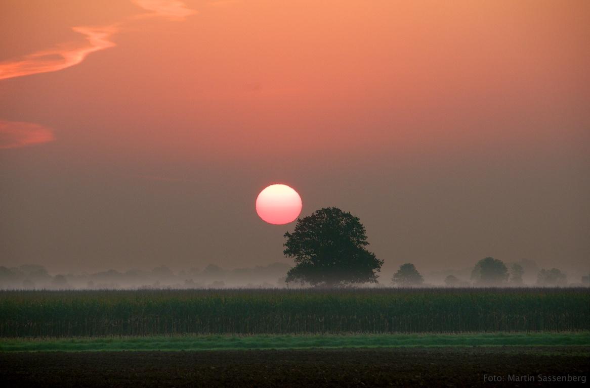 Heimischer Sonnenaufgang
