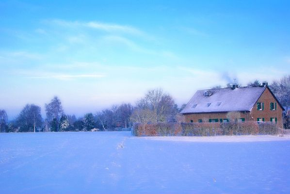 Heimischer Winter