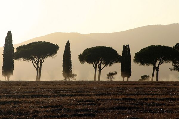 Heißer Sommer in der Toscana