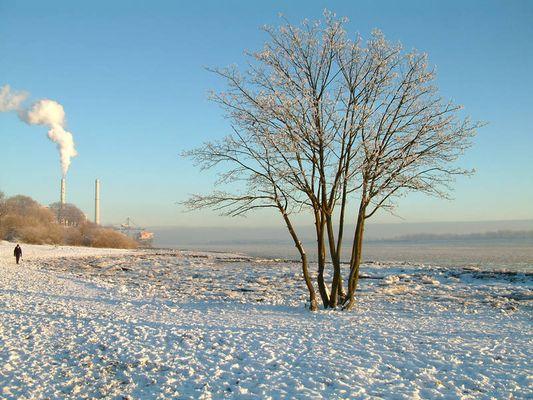 Heizkraftwerk an der Elbe