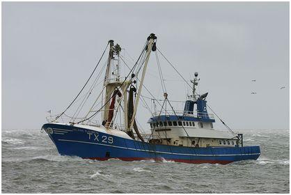 Fischereischiffe