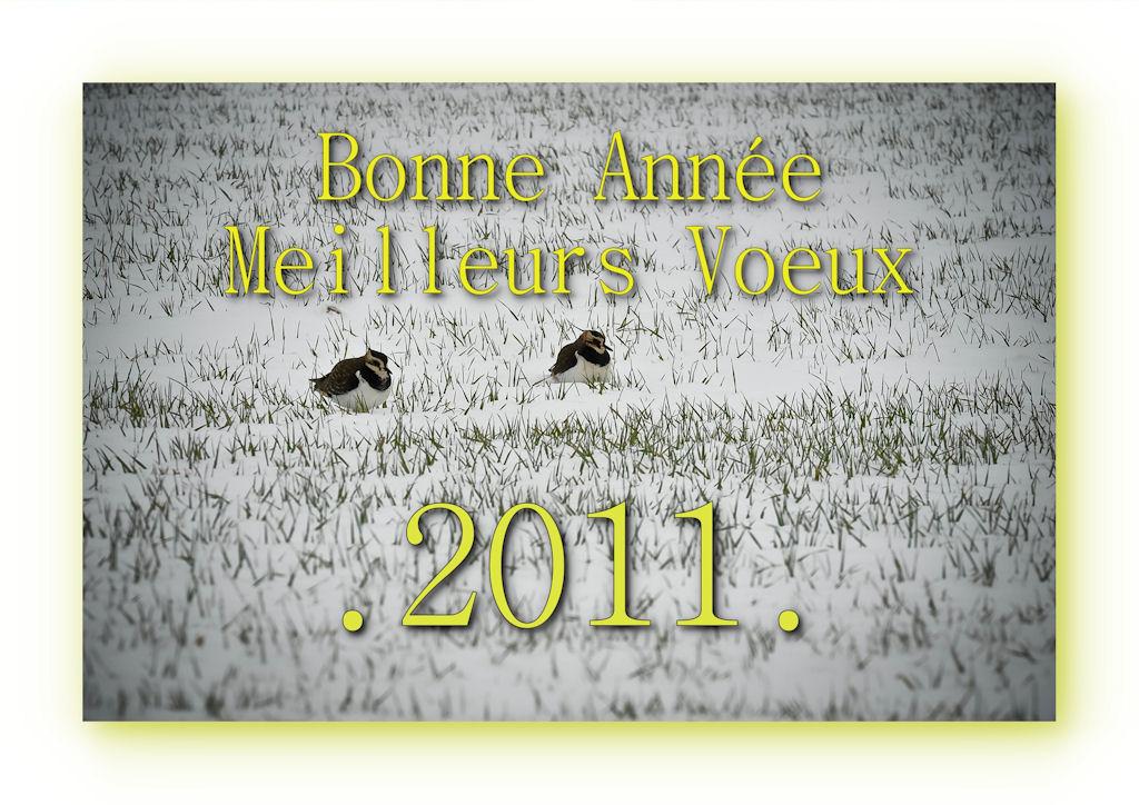 .....Hello pour Tous.....