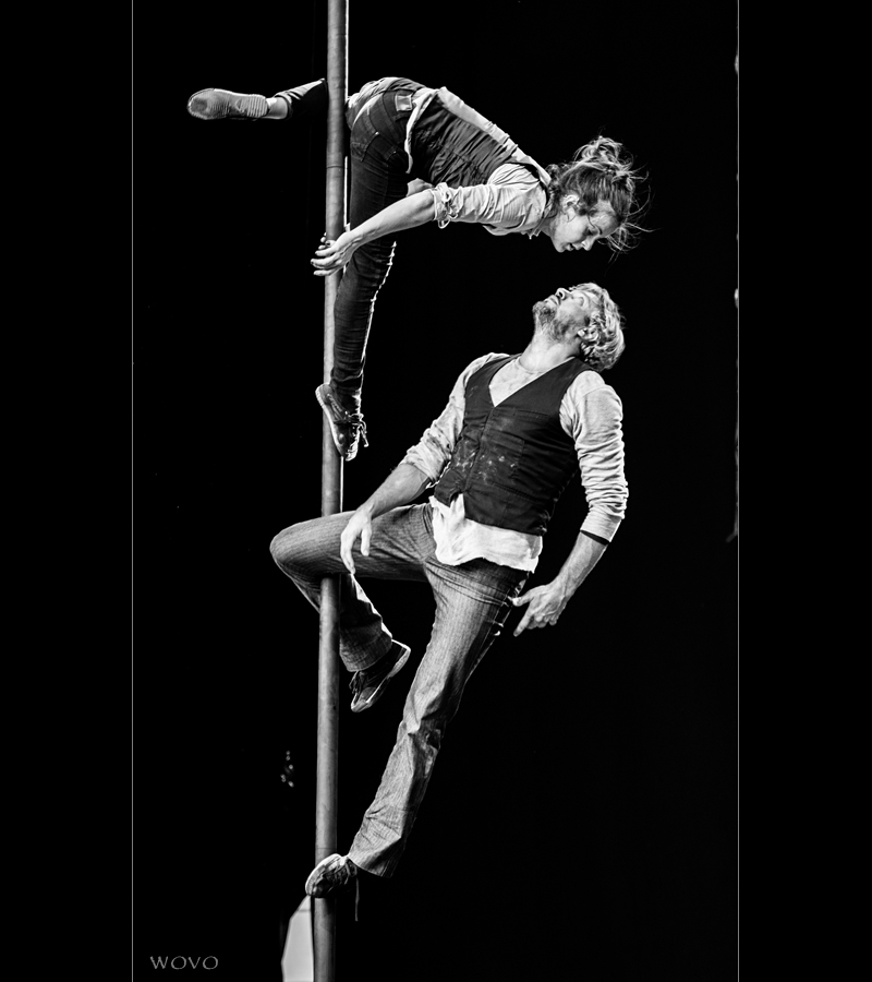 Heloise & Will - Chinese Pole Duo