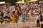 Hengstparade Moritzburg Springen