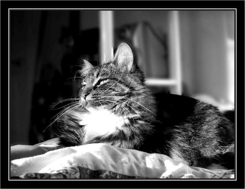 Her Majesty.