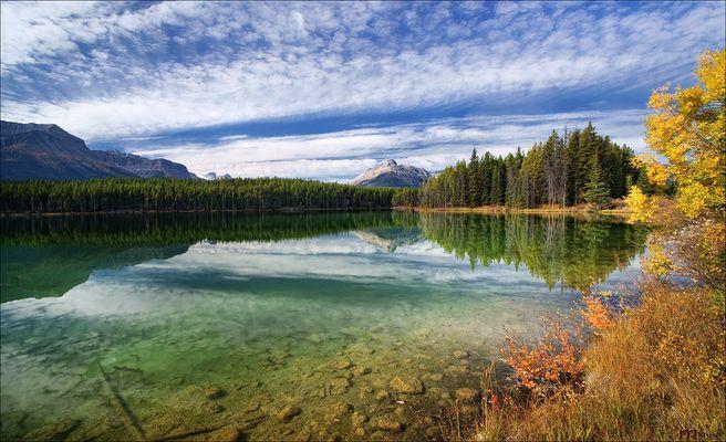Herbert Lake /1/