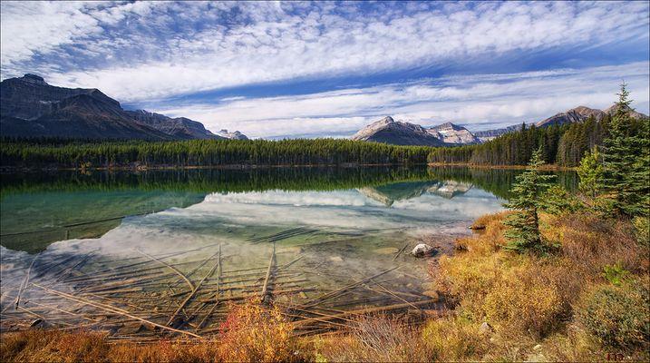Herbert Lake /2/