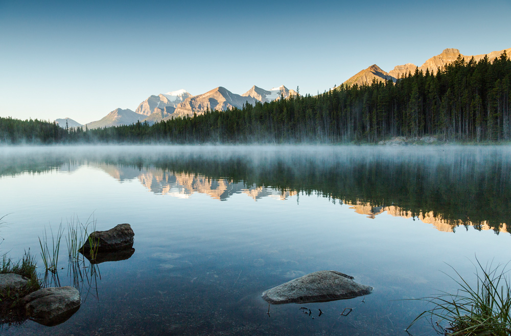 Herbert Lake II