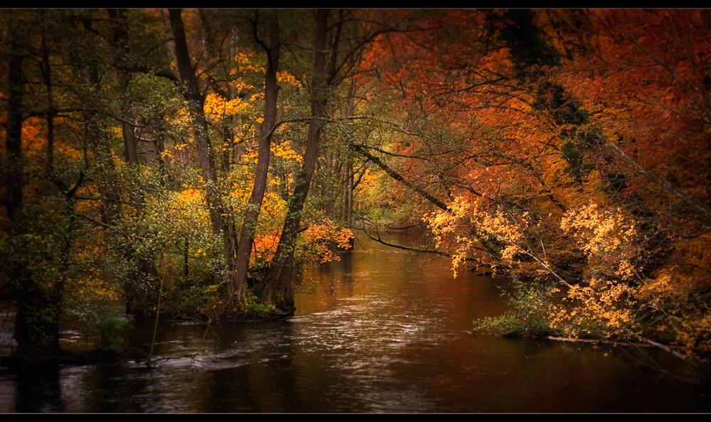 ..Herbst........