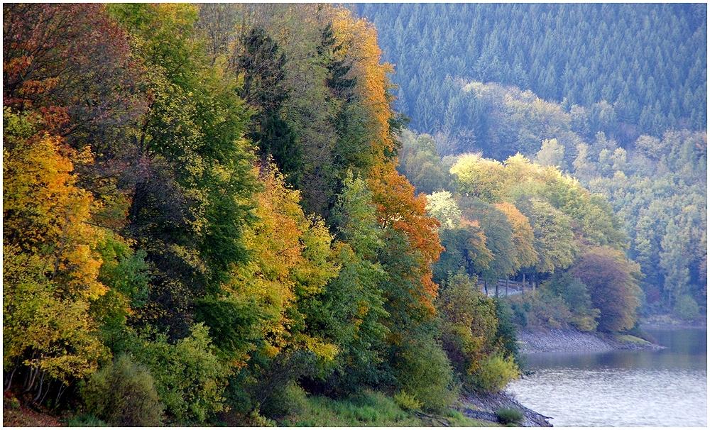 Herbst # 1