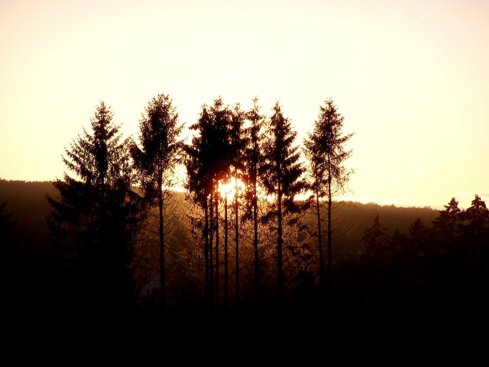 Herbst 14