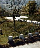 Herbst 1977 - 1