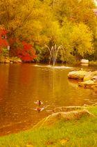 Herbst (2)