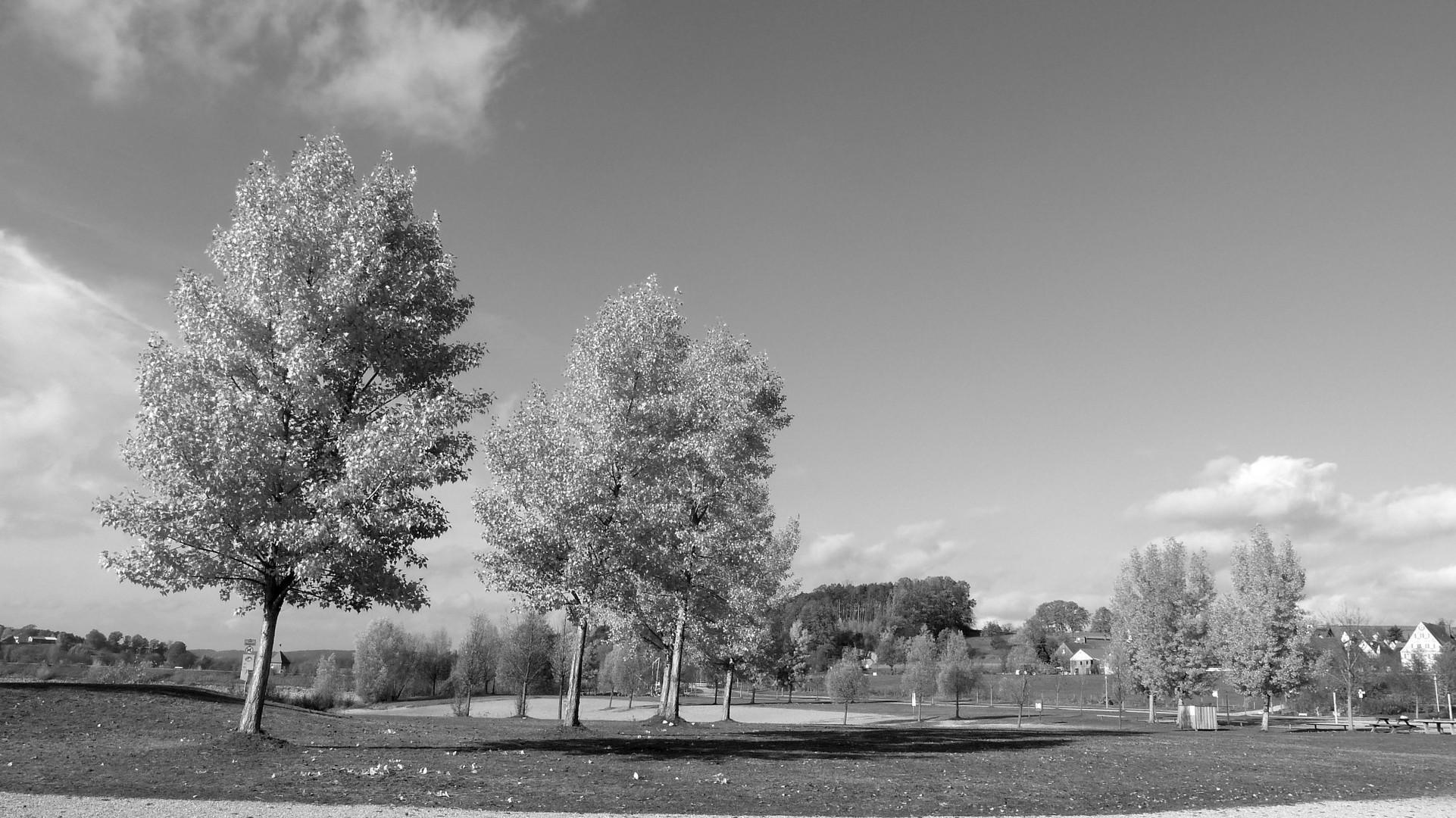 Herbst 20