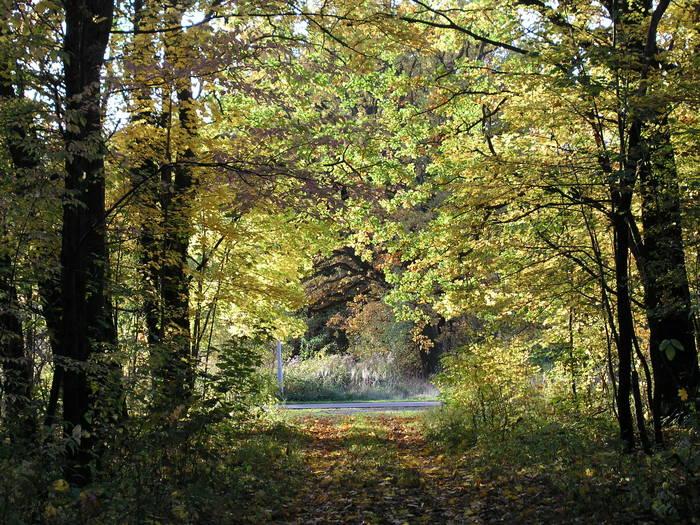 Herbst 2006