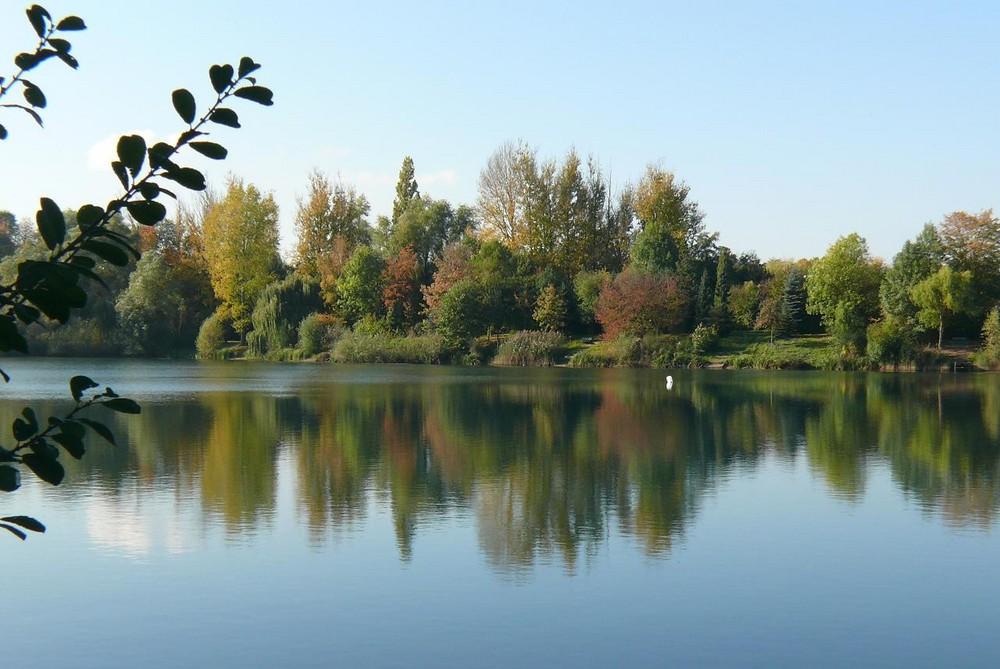 Herbst 2007 (7) Ein Paradies nicht nur für Angler in Leverkusen-Hitdorf
