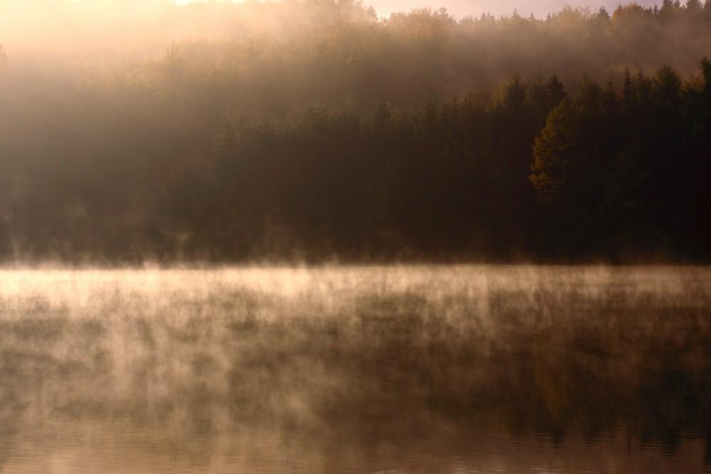 Herbst 2009 (04)
