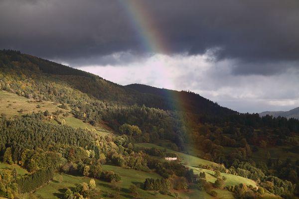 Herbst 2010 (2)