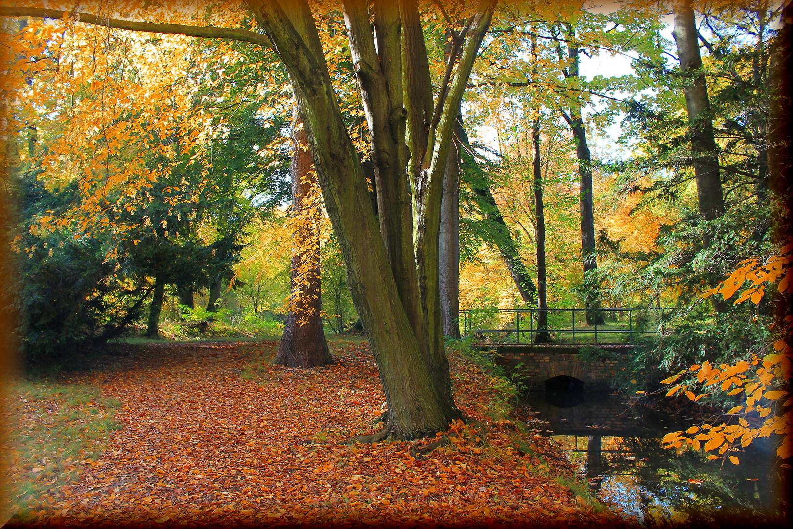 Herbst *2013*