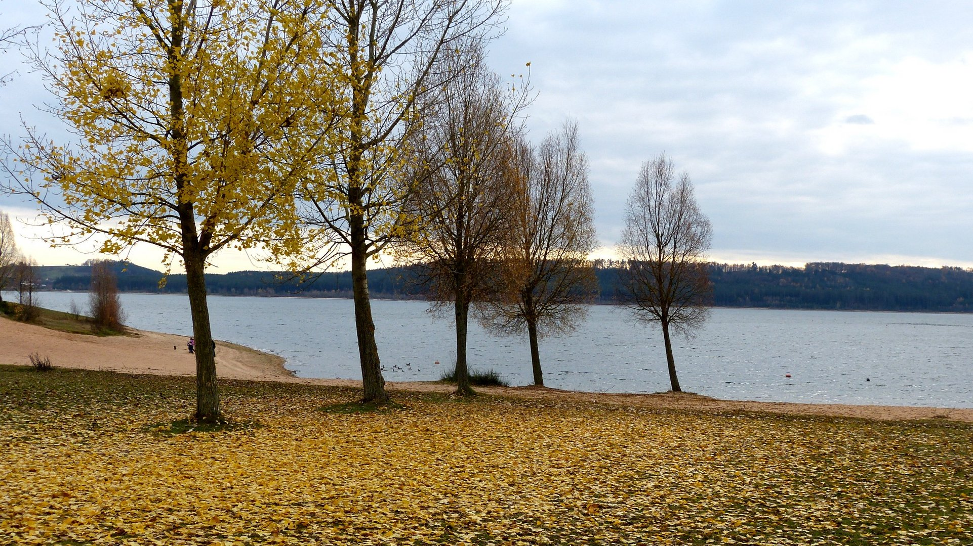 Herbst 29