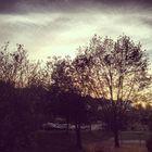 Herbst Abend