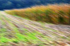 Herbst abstrakt # 5072