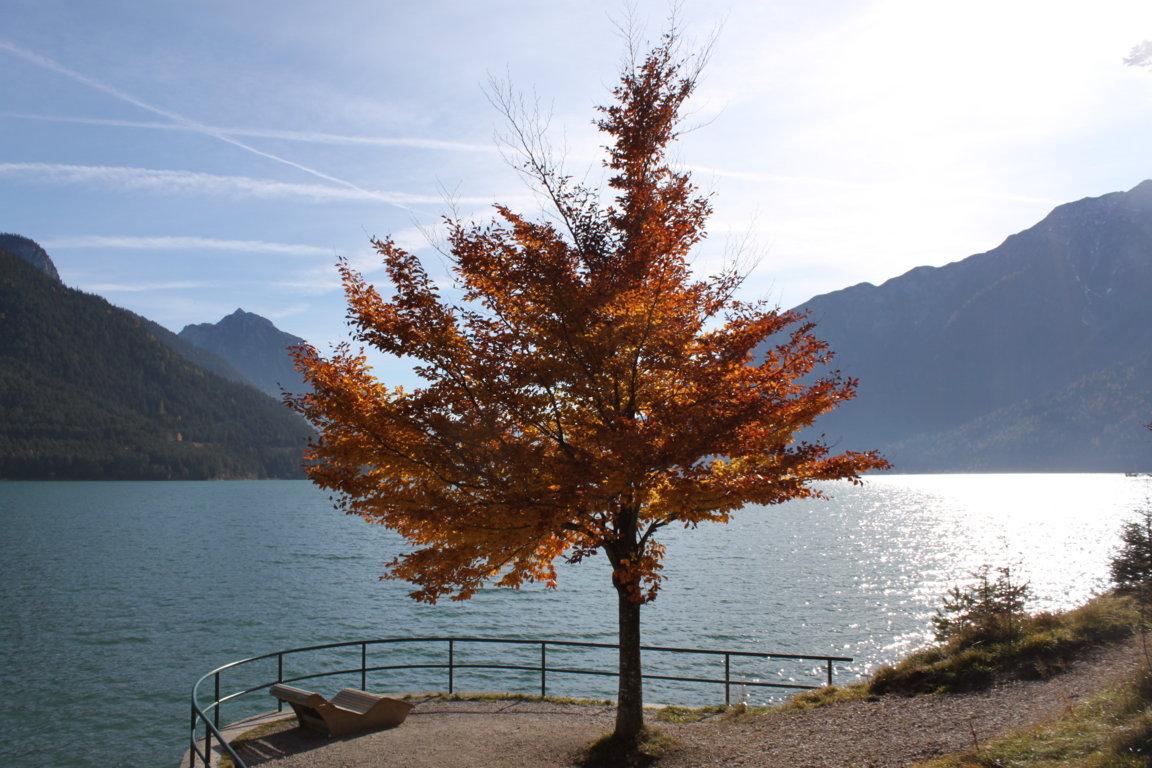 Herbst am Achensee