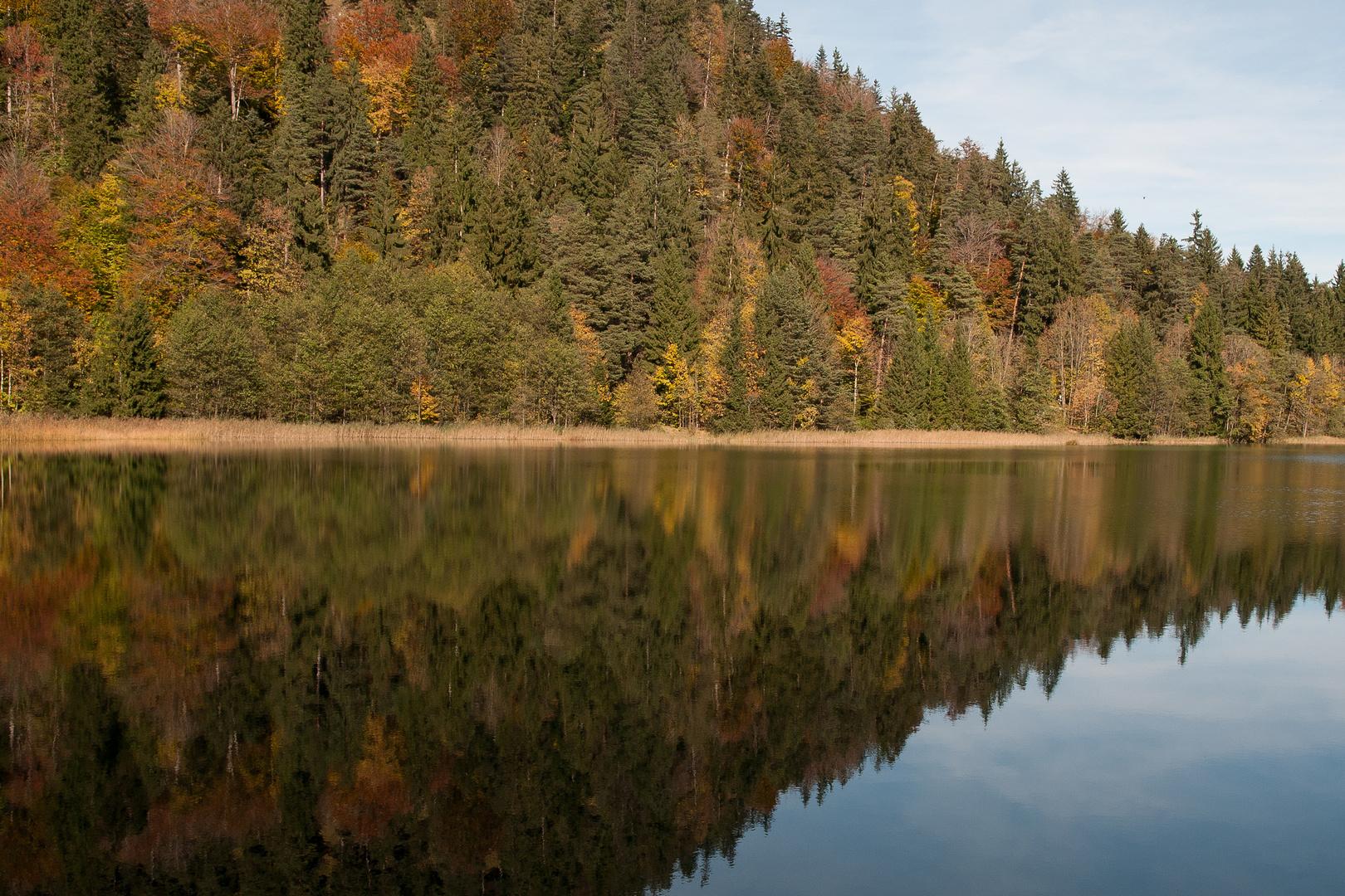 Herbst am Alatsee