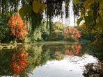 Herbst am Angelteich